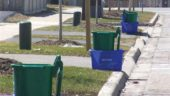 Curbside recycling and composting set-out at the City of Markham, which is closing in on 80 per cent diversion from landfill.