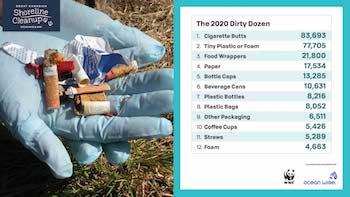 dirty dozen of litter - cigarette butts